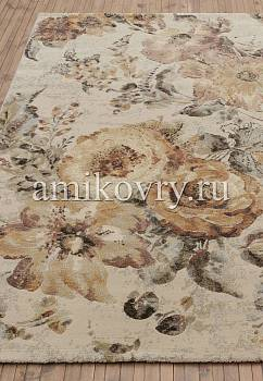 Amikovry_Sundance_79349-4848-1-W.jpg