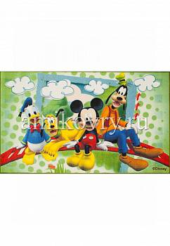 дизайн ковра Disney Mickey Mouse D3MC003-green